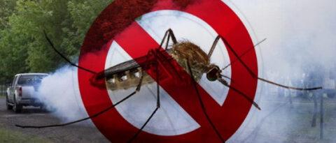 Tájékoztatás szúnyoggyérítésről