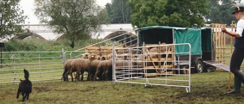 Hortobágyi Pásztorok és Magyar Hagyományőrző Pásztorkutyások XIV. találkozója