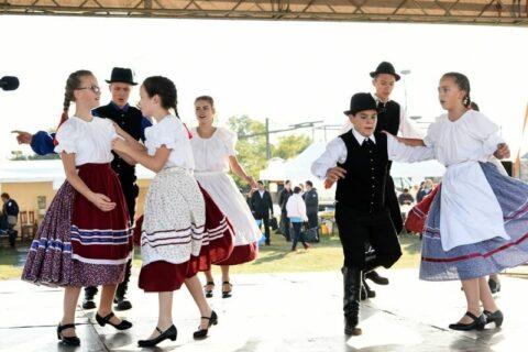 Magyar Szürke-Barátok Találkozója